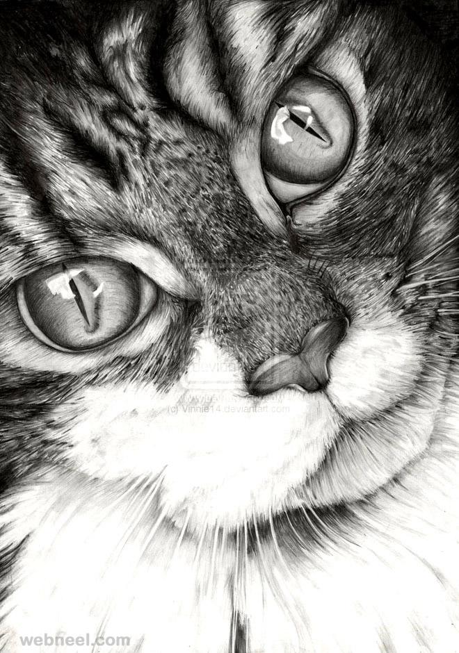 طرح نقاشی گربه