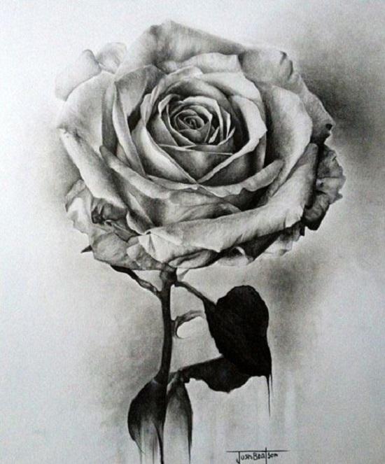 نقاشی سیاه قلم گل