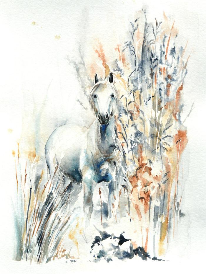 نقاشی اسب با آبرنگ